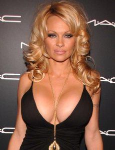 Pamela Anderson[1]
