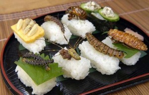 insect_sushi_04[1]
