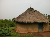Targeting_Homes_Thatch_4[1]
