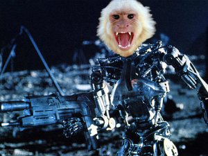 Robot-monkey-terminators[1]