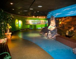 the-aquarium[1]