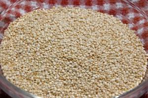 quinoa-grain[1]